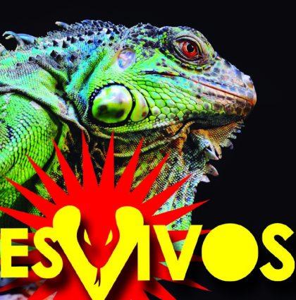 Reptiles Vivos